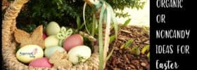 Ten Organic or Noncandy Ideas for Easter Baskets