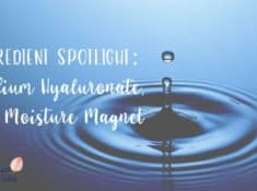 Sodium Hyaluronate Ingredient Spotlight