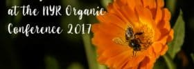 7 Things I Learned at the NYR Organic Conference 2017