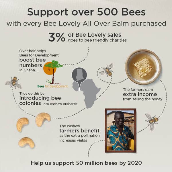 "10 Reasons to ""Bee Lovely"" with Organic Skincare. Check out how to help save the bees by using Neal's Yard Remedies. #nyrorganic #savethebees"