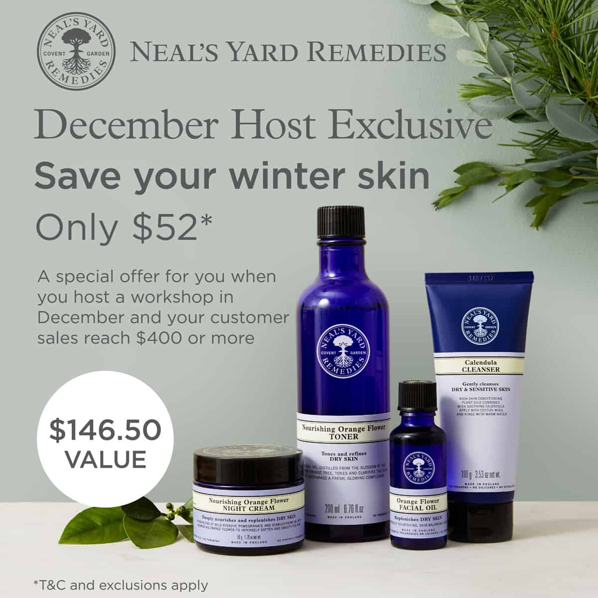 December host special. NYR Organic. Get these products for just $52 with a qualifying party! #organicskincare
