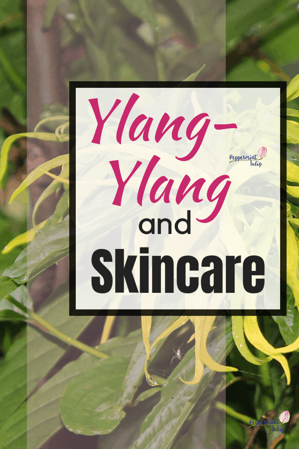 Ylang Ylang and Skincare. Check out the characteristics and benefits of ylang ylang essential oil and how it is used in skincare.
